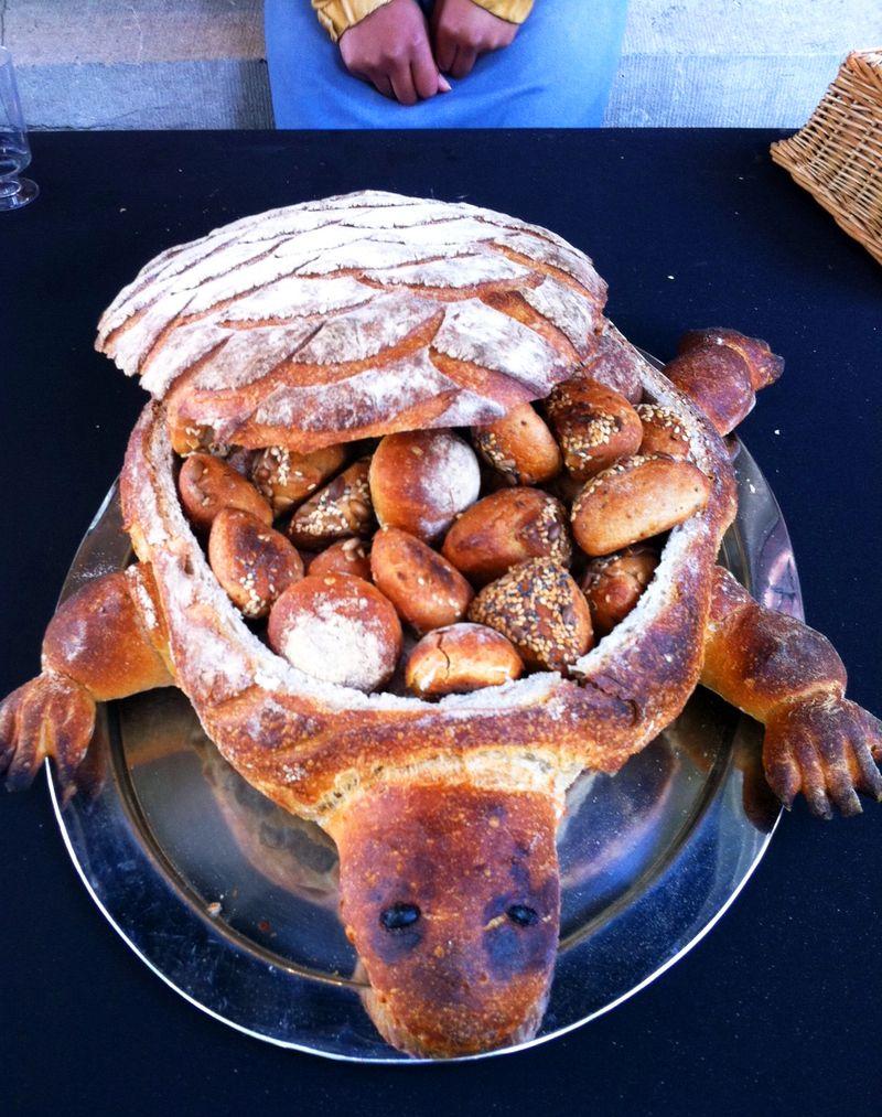Turtle-bread